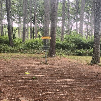 Hole 6 Short Pin